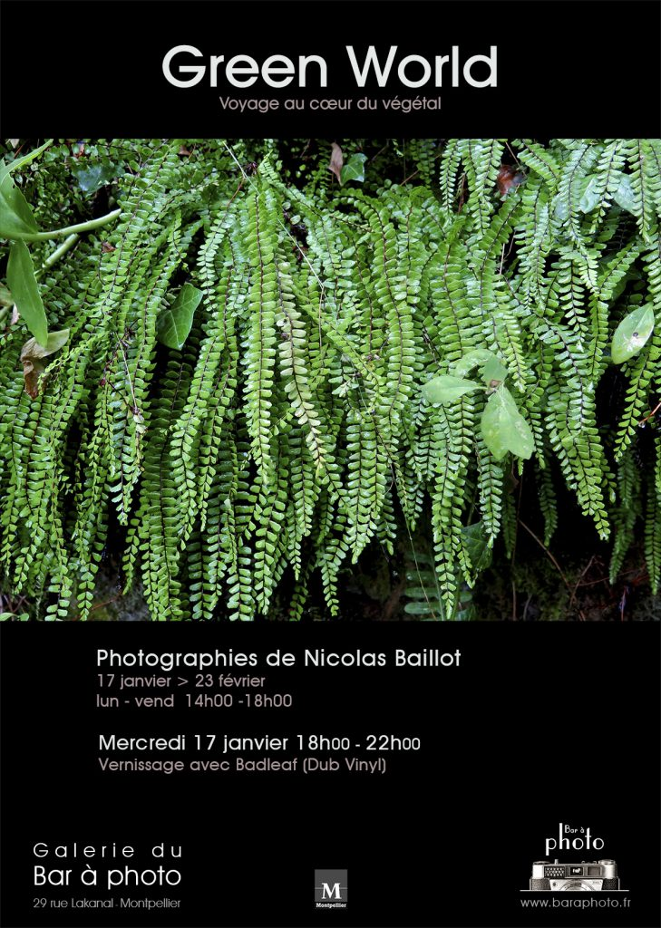 Green World : Exposition Photographiques de Nicolas Baillot à la Galerie du Bar à Photo.
